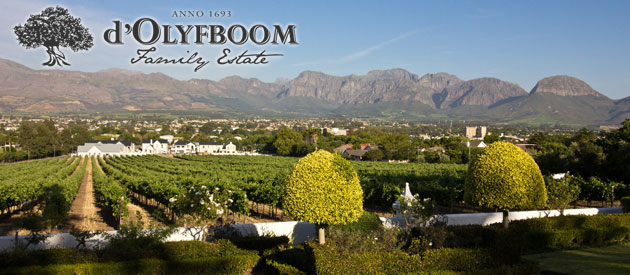 D'OLYBOOM FAMILY ESTATE, PAARL