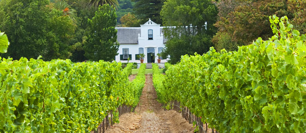 De Doorns, in the Western Cape, Cape Winelands, South Africa